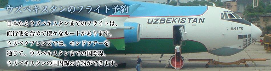 ウズベキスタンの飛行機