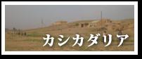 カシカダリア紹介ページへ