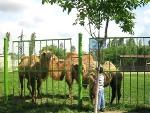 タシケント動物園