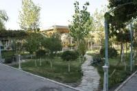 アジアブハラ 中庭1