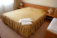 グランドラドゥスJSSホテル 客室4