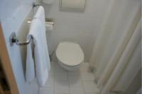 ショドリックパレスホテル バスルーム3