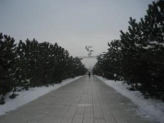 適度な寒さなら雪の中も散歩も楽しい^_^